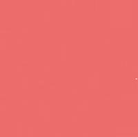 Pink Ink Fund